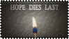 Hope Dies Last by k-nelo