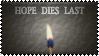 Hope Dies Last by k-nelo