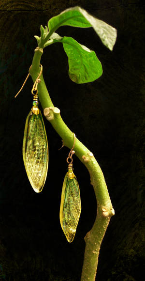 cicada wing earrings - green and gold