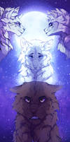 [C] Under the stars