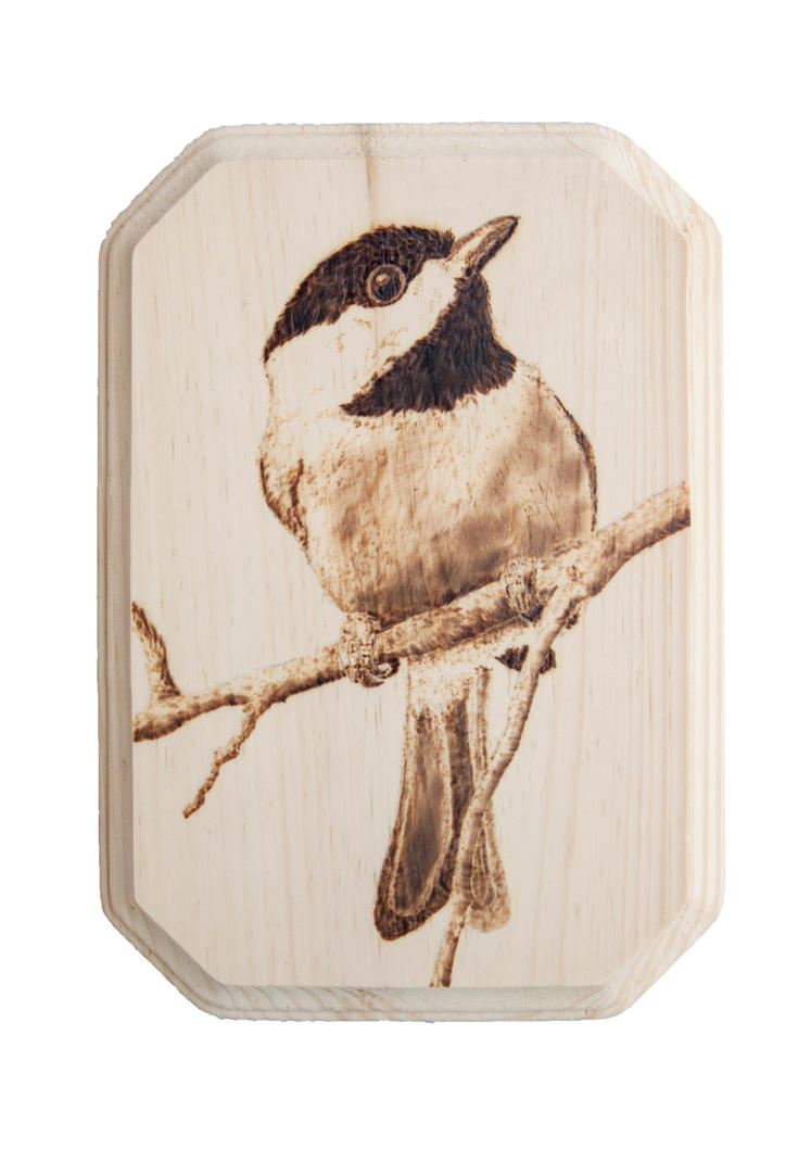 Black-capped Chickadee Woodburning by EdgedFeather