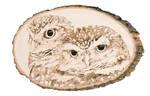 Burrowing Owls Woodburning