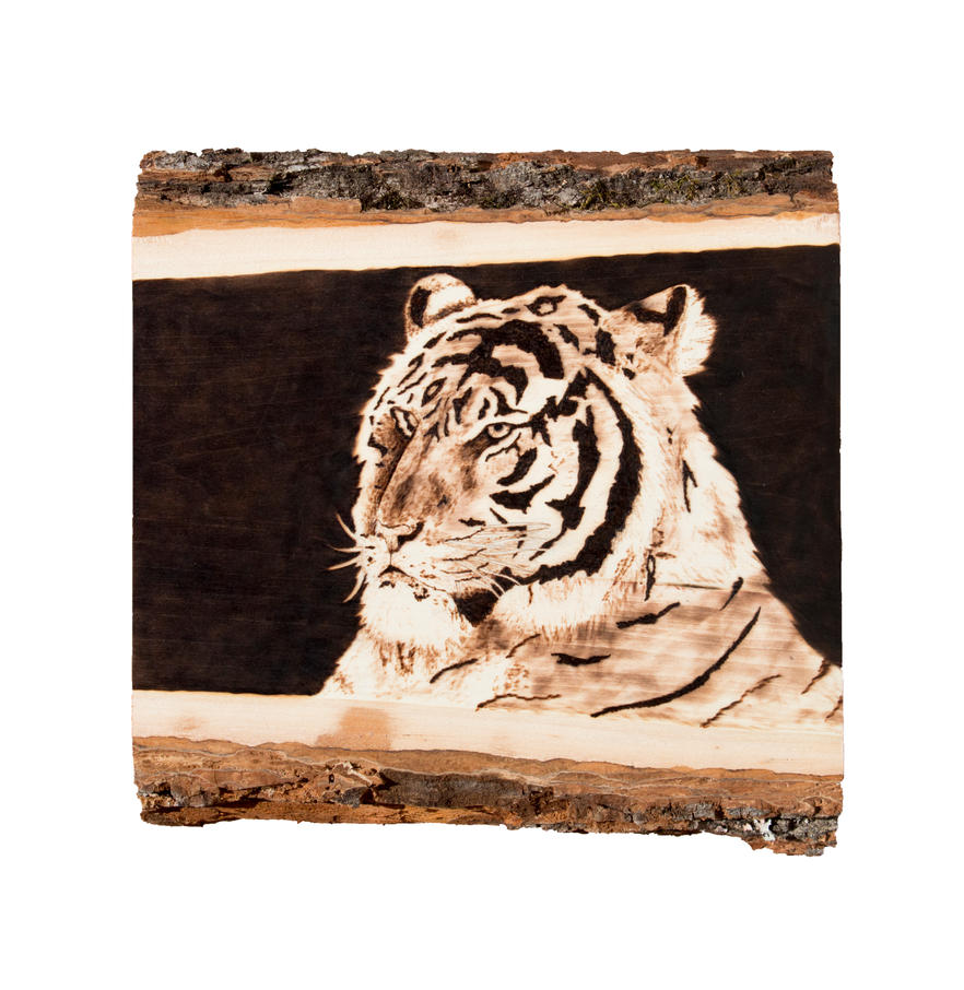 Tiger Woodburning by EdgedFeather
