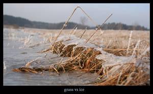 grass vs ice