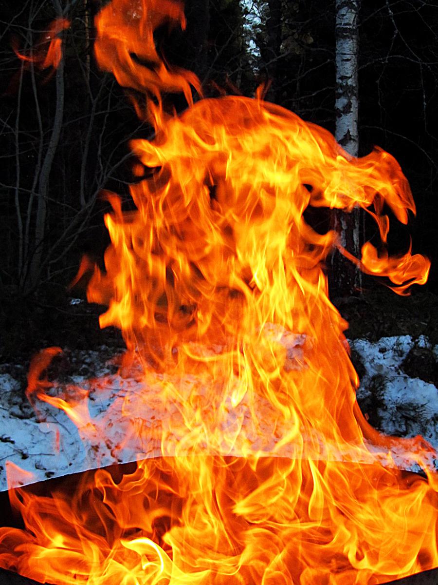dragon of flames by kitsune89