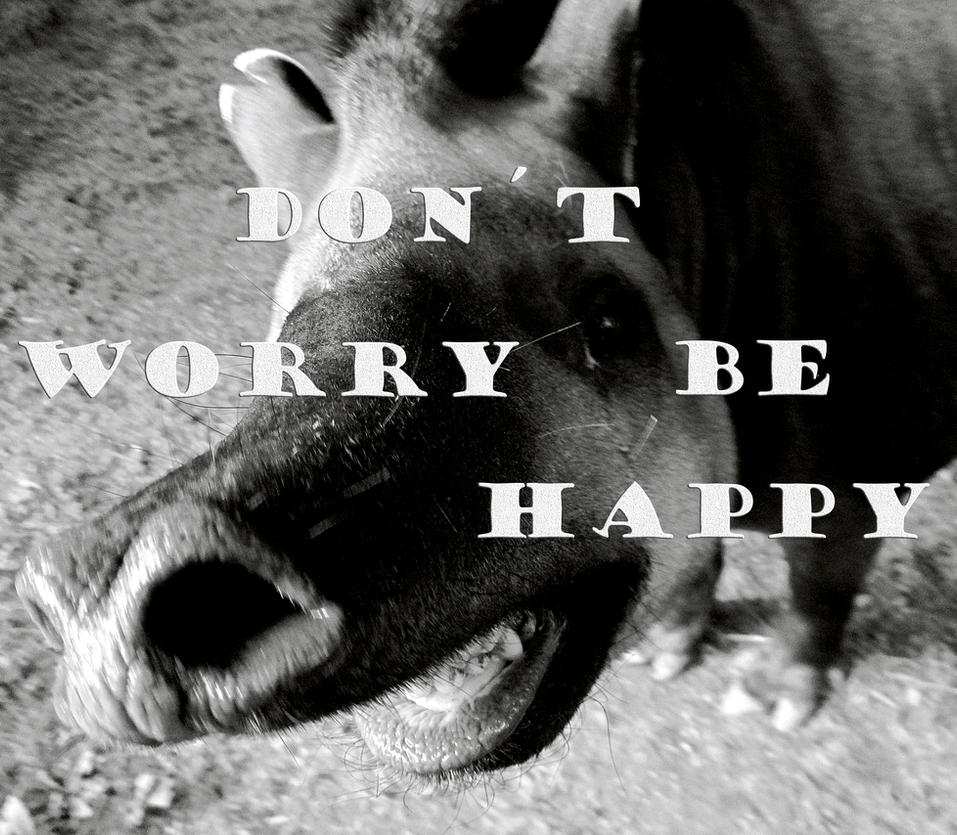 Dont Worry be happy! by kitsune89