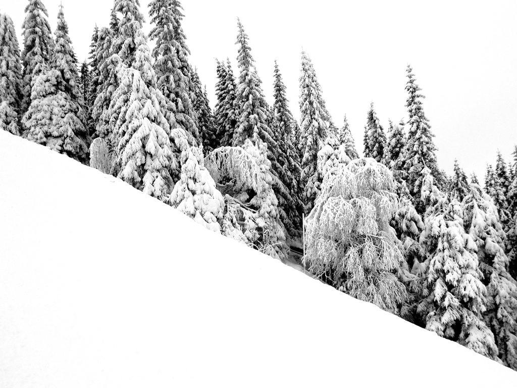 Winter in sweden by kitsune89
