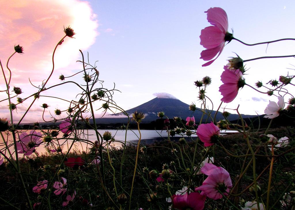 Mt fuji  in the twilight by kitsune89