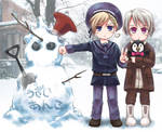 APH-Norway and Iceland
