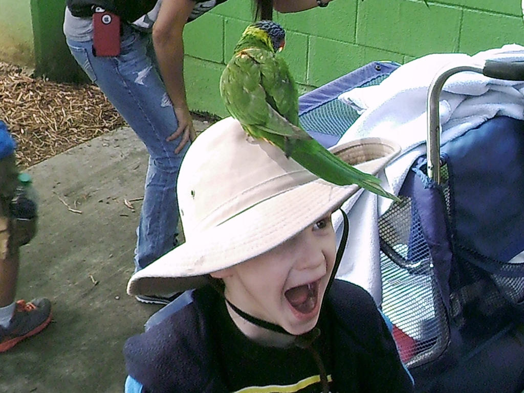 OMG! THERE'S A BIRD ON MY HEAD!! by LittleMrsAdams