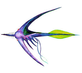 Aquabow