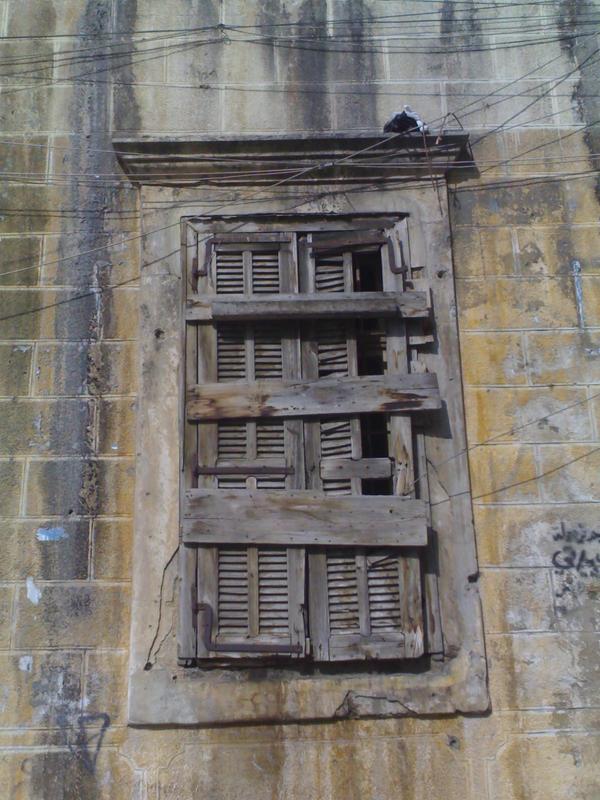 Window by Ryansan