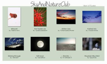 Week 1 of December - 008 by SkyAndNatureClub