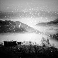 First Snow by incisler