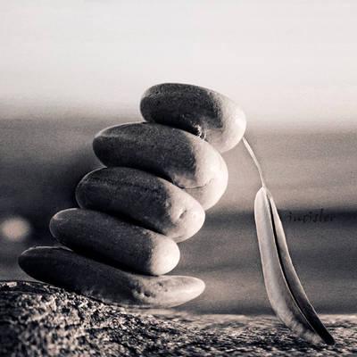 Balance by incisler