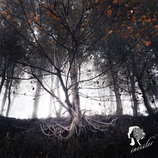 Soul stump by incisler