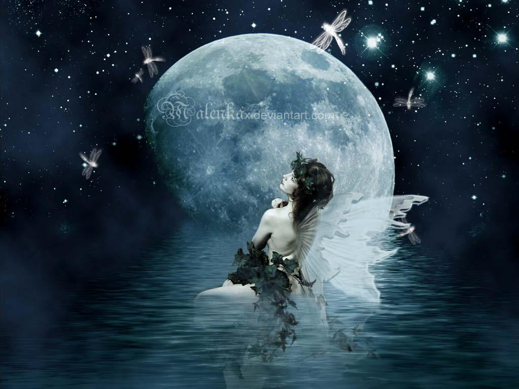 Cool Wallpaper Night Fairy - night_fairy_wallpaper_by_malenkax  Perfect Image Reference-723655.jpg