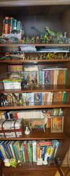 Books by Eveeka