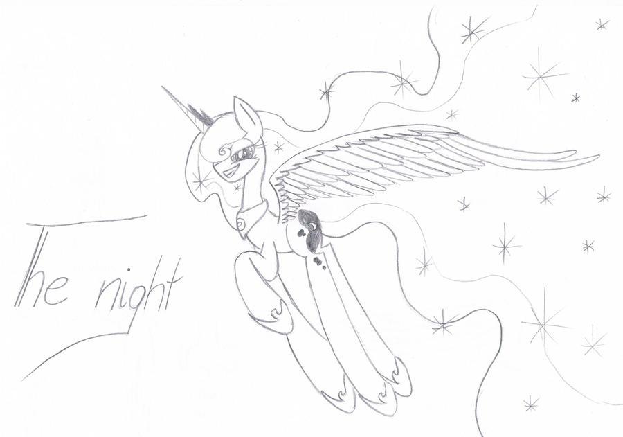 Luna's Night by Art-Cookie