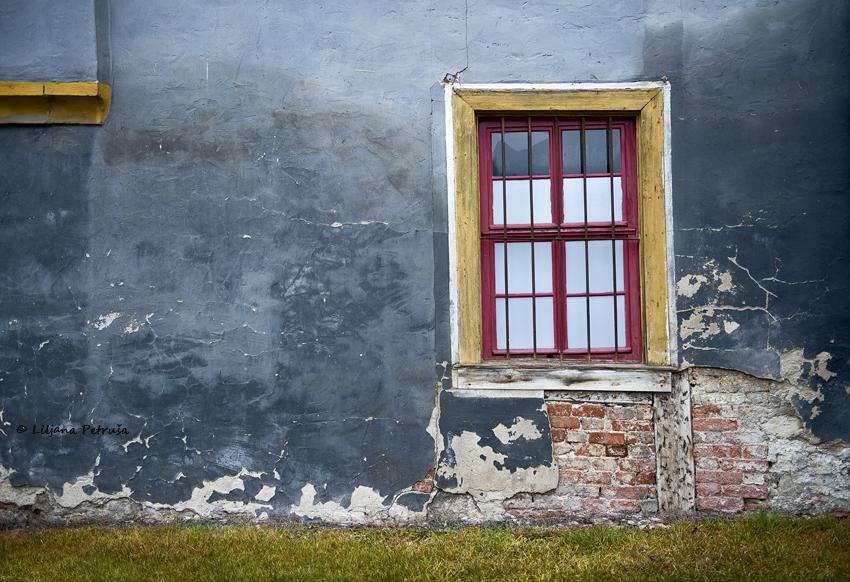 Window by lpetrusa