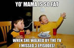 Yo Mamma Is So Fat That....