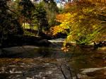 Fowler River by glowcat