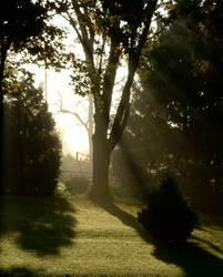 The Sun and Mist