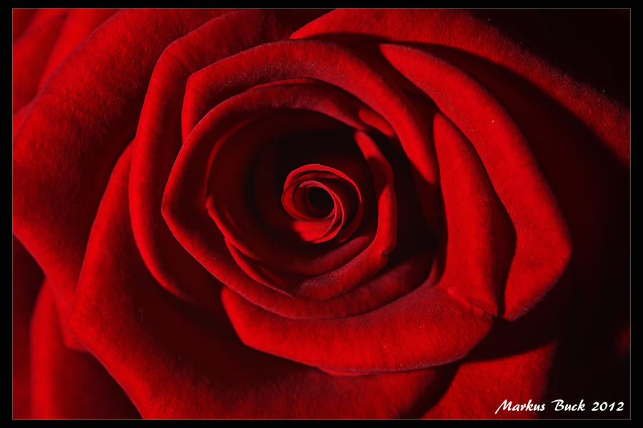 Red Swirl by HobbyFotograf