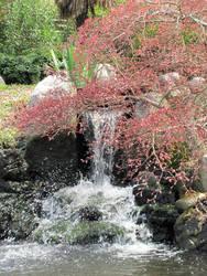Waterfall and Tree by ChaosKomori