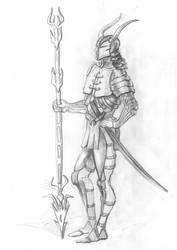 Medieval warrior by olga-idealist