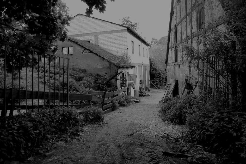 Dreamy Farm by Nemesis38