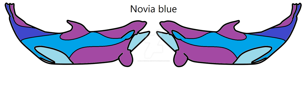 PC-CO- Novia Blue by Dolphingurl21stuff