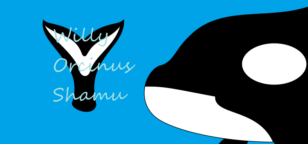 Willy Wallpaper by Dolphingurl21stuff