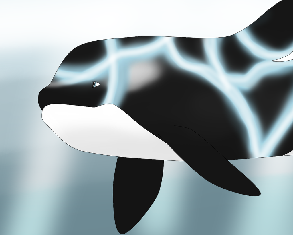 Whale~ by Dolphingurl21stuff