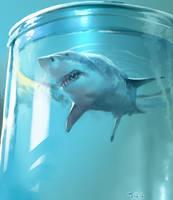 Shark by akizhao