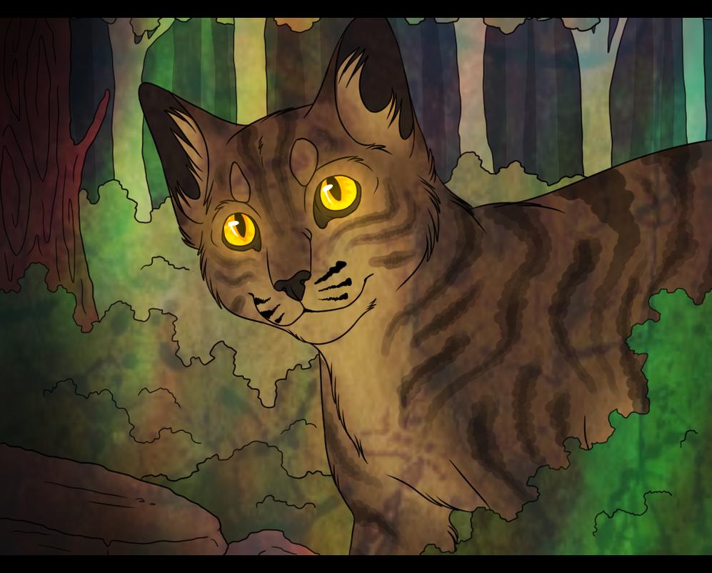 Warrior Cats Character Design templates Blackstar by ...