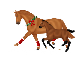 Christmas ponies by SilverRiverStables