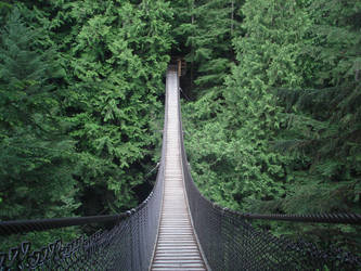 Lynn Canyon Suspension Bridge by lifesmemoirs