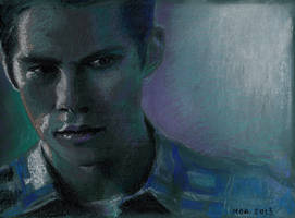 Stiles in dry pastels