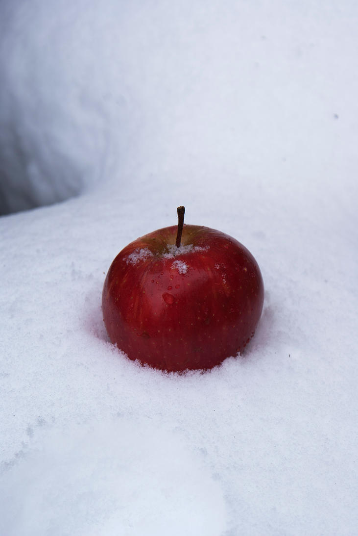 snow white apple 3 by wintersmagicstock on deviantart
