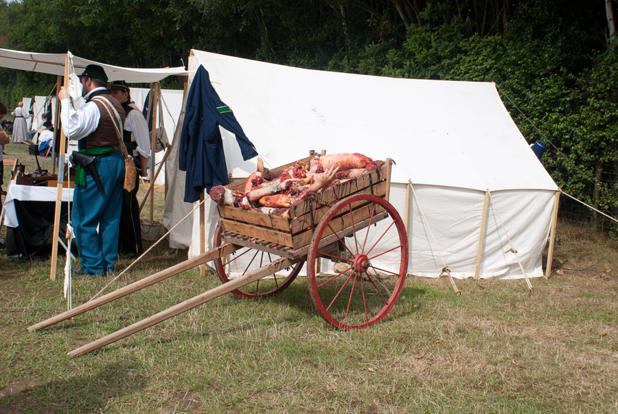 DSC05974 Battle Field Cart by wintersmagicstock