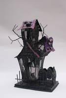 DSC06504 Haunted House 1 by wintersmagicstock