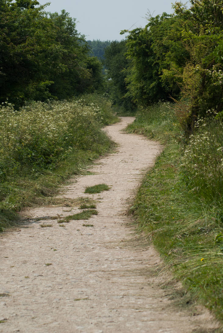 DSC04693 Wayland's Path by wintersmagicstock