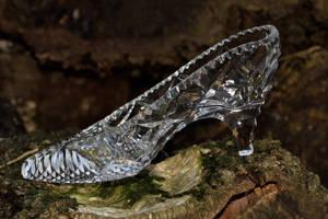 DSC 0070 Glass Slipper