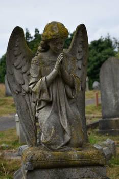 DSC 0050 Hastings Cemetery In Summer