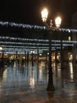 IMG 0151 Winter Lights 1
