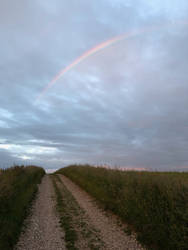 IMG 0482 Rainbow Trackway