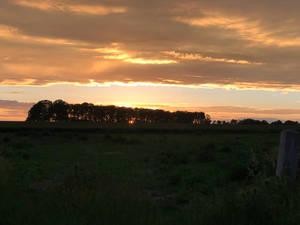 IMG 0481 Sunset