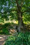 DSC 2910 Grotto