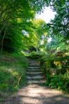 DSC 2905 Grotto Steps